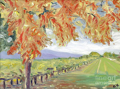 Fall In Napa Valley Poster