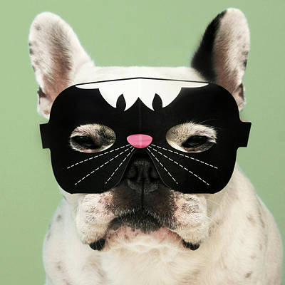 French Bulldog Poster by Retales Botijero