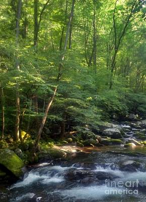 Poster featuring the photograph Great Smoky Mountains by Janice Spivey