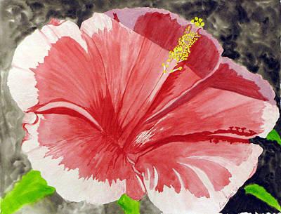 Happy Hibiscus Poster