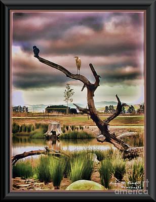 Hdr Wetlands Poster