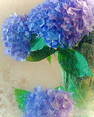 Poster featuring the photograph Hydrangea by Anna Rumiantseva