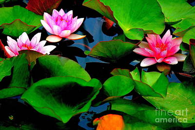 Lilly Abstract Poster