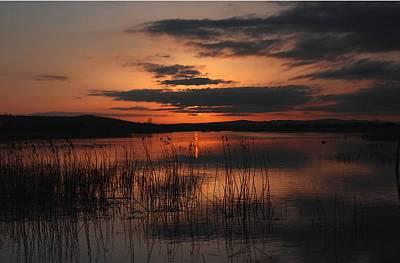 Menlo Sunset Poster