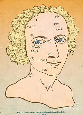 Metoposcopy, 17th Century Poster by Science Source