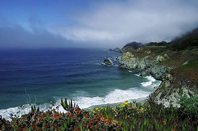 Poster featuring the photograph Pacific Coast by Renee Hardison