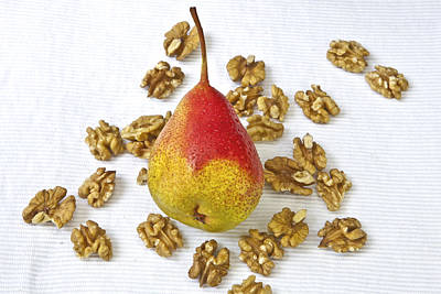 Pear With Walnuts Poster by Joana Kruse