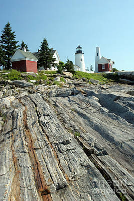 Pemaquid Point Lighthouse Poster by Ted Kinsman