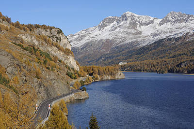 Road Along Lake Sils In Autumn, Piz Surlej And Munt Arlas, St Moritz, Maloja District, Engadin, Graubunden, Switzerland Poster by Martin Ruegner