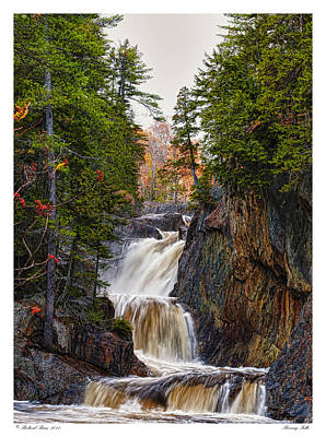 Poster featuring the photograph Roaring Falls by Richard Bean
