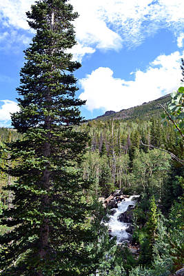 Poster featuring the photograph Rocky Mountain National Park2 by Zawhaus Photography