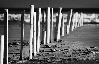 Row Of White Painted Beach Markers County Derry Londonderry Northern Ireland Uk Poster by Joe Fox