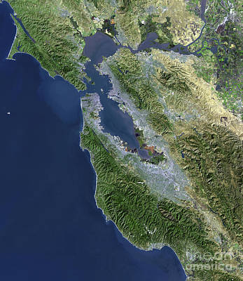Satellite View Of San Francisco Poster