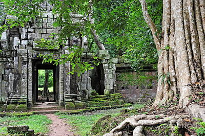 Strangler Fig Tree Roots On Ruins Poster by Sami Sarkis