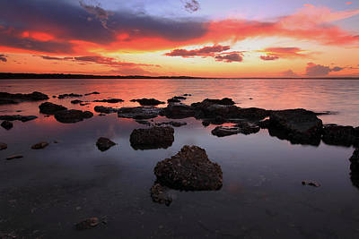 Swan Bay Sunset Poster