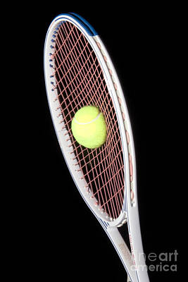 Tennis Ball And Racket Poster by Ted Kinsman