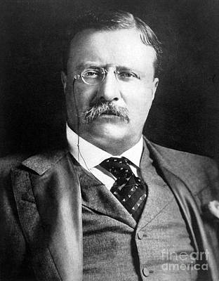 Theodore Roosevelt, 26th American Poster by Science Source