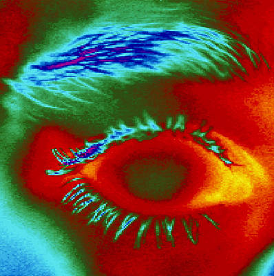 Thermogram Of A Close-up Of A Human Eye Poster