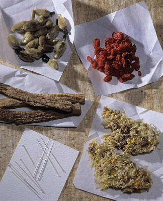 Traditional Chinese Medicines Poster