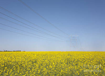 Transmission Towers And Power Lines Poster