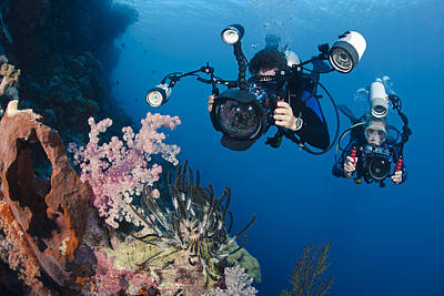 Underwater Photography Poster by Dave Fleetham - Printscapes