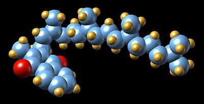 Vitamin K1, Molecular Model Poster by Dr Mark J. Winter