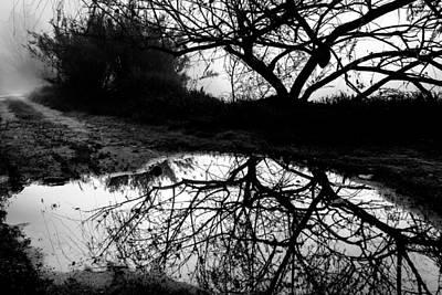 Water Mirror Poster by Edgar Laureano
