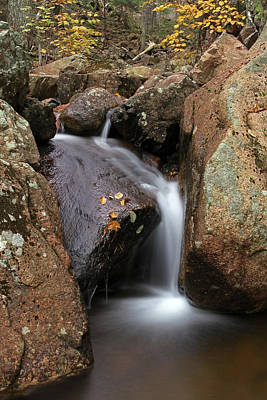 Waterfall In Acadia National Park Poster