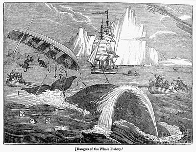 Whaling, 1833 Poster by Granger