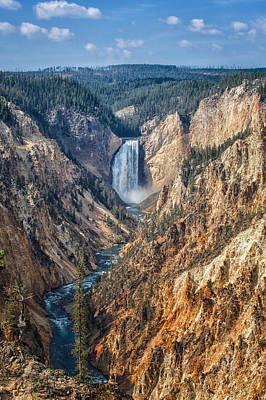 Yellowstone Lower Falls Poster by Ronald Lutz