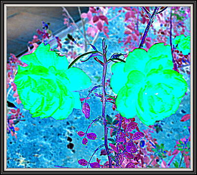 Flowers Flowers And Flowers Poster by Anand Swaroop Manchiraju