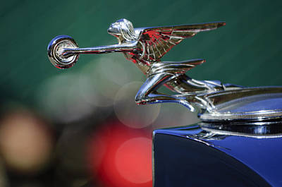 1934 Packard 1101 Eight Coupe Hood Ornament Poster