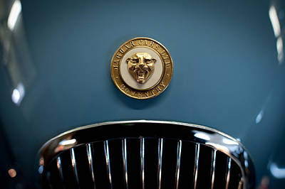 1952 Jaguar Hood Ornament Poster