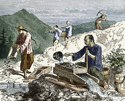 19th-century Gold Mining, Australia Poster by Sheila Terry