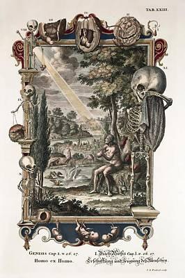 1731 Johann Scheuchzer Creation Of Man Poster by Paul D Stewart