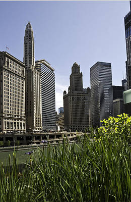 Poster featuring the photograph Chicago Architecture by Paul Plaine