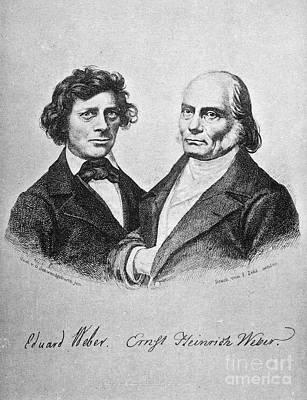 Ernst Heinrich Weber Poster by Granger