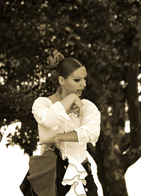 Flamenco Dance Poster by Perry Van Munster
