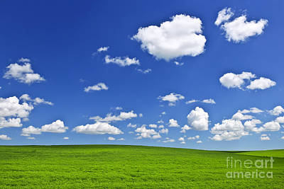 Green Rolling Hills Under Blue Sky Poster