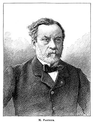 Louis Pasteur, French Microbiologist Poster