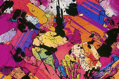 Moon Rock, Transmitted Light Micrograph Poster by Michael W. Davidson - FSU