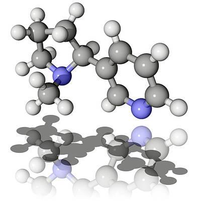 Nicotine Molecule Poster by Laguna Design