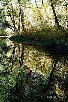 Poster featuring the photograph Oak Creek Reflection by Tam Ryan