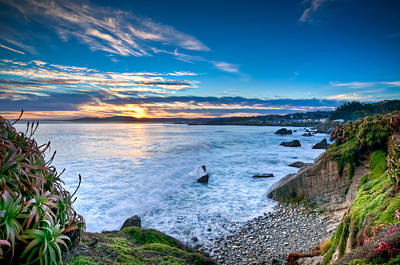 Pacific Grove Sunrise Poster by Connie Cooper-Edwards