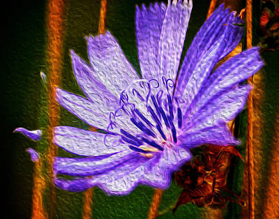 Purple Flower Poster by Andre Faubert