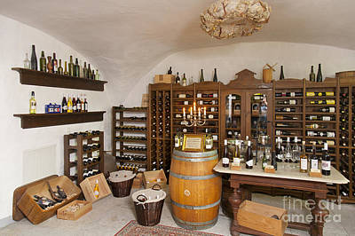 Rustic Wine Cellar Poster by Jaak Nilson