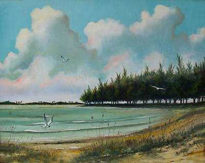 Skyway Beach Poster by Charles Yates