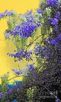 Poster featuring the photograph Sun Setting On Wisteria by Holly Martinson