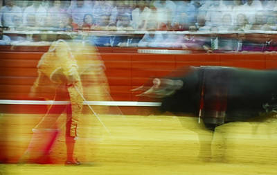 Tauromaquia Bull-fights In Spain Poster by Guido Montanes Castillo