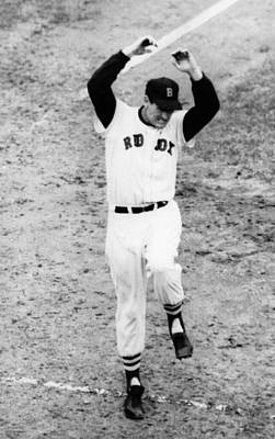 Ted Williams Of The Boston Red Sox Poster by Everett